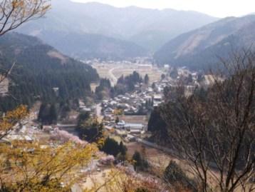 山竹田の中心部遠望