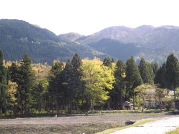 木本から笹又峠を臨む