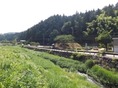 下城戸と一乗谷川(北から)