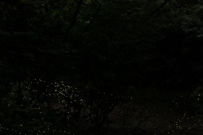 2012.5.30  (6)
