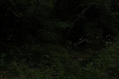 2012.5.30  (2)