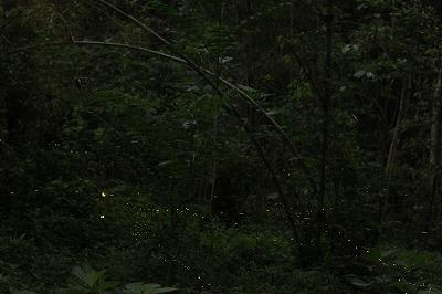 2012.5.30  (1)