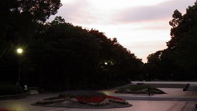 2012.8.02  (11)