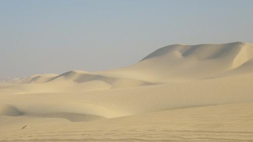 Sahara Race-3 (11)