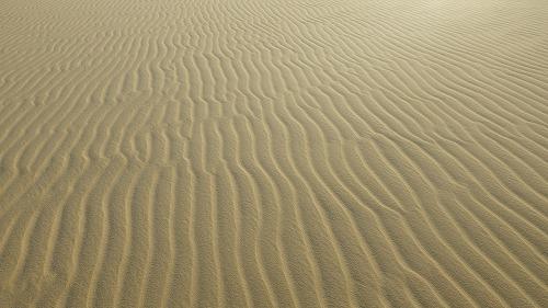 Sahara Race-3 (8)