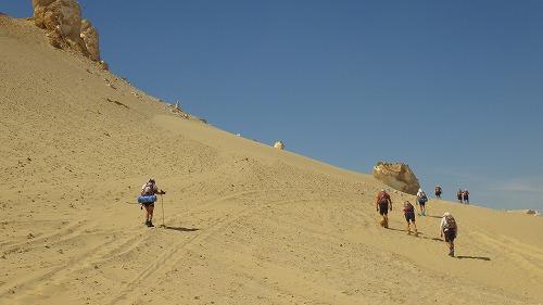 Sahara Race-3 (24)