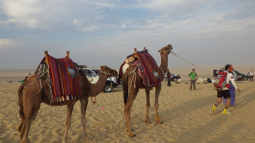 Sahara race 4  (6)