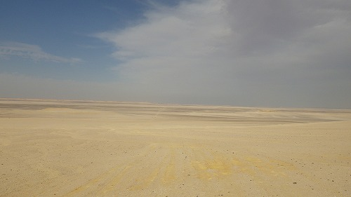 Sahara race 4  (40)