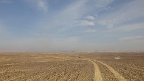 Sahara Race 5  (12)