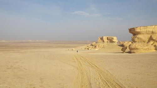 Sahara Race 5  (10)