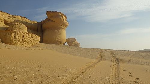 Sahara Race 5  (9)