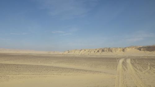 Sahara Race 5  (13)