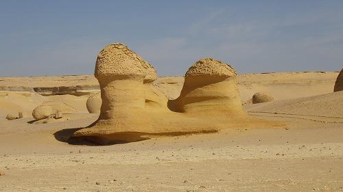 Sahara Race 5  (22)