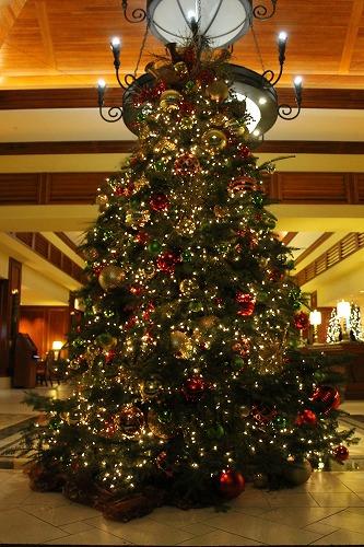 クリスマスツリー (12)
