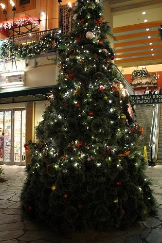 クリスマスツリー (19)