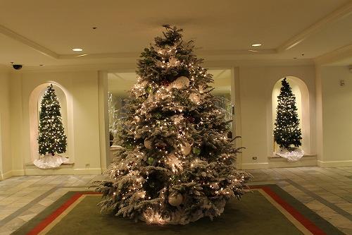 クリスマスツリー (21)