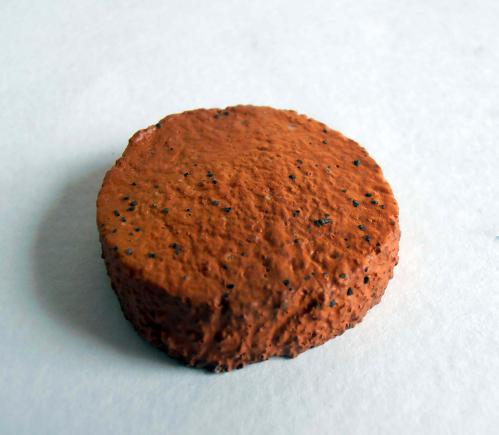 クッキーマグネット 2