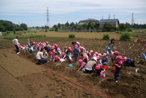 2006-01-26 24年6月27日ジャガイモ掘り 004 (800x536)