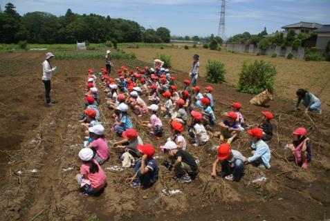 2006-01-26 24年6月27日ジャガイモ掘り 022 (800x536)