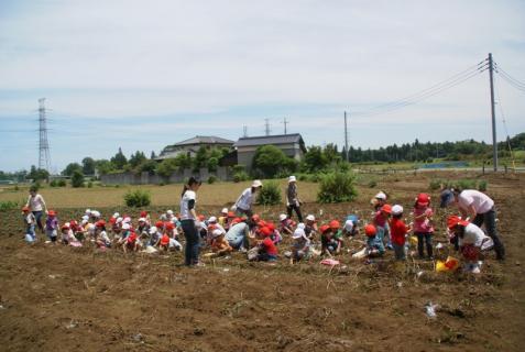 2006-01-26 24年6月27日ジャガイモ掘り 020 (800x536)