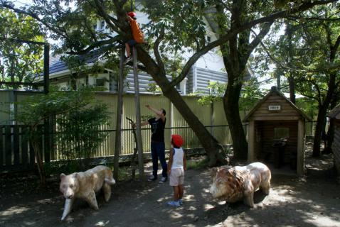 2006-04-06 8月、9月誕生会、園庭風景、ざくろ、銀杏、木登り 089 (800x535) (2)