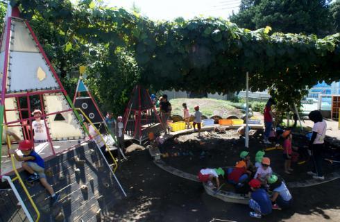 2006-04-11 24年9月、8月誕生会、お店やごっこ、四街道さつき幼稚園園外保育 138 (800x522)