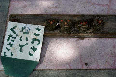 2006-05-30 24年度芋巾着、ハローウイン、作る、職員劇 029 (800x533)