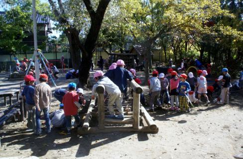 2006-06-09 24年度四街道さつき幼稚園来園 015 (800x524)