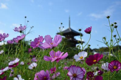 法起寺 (2)