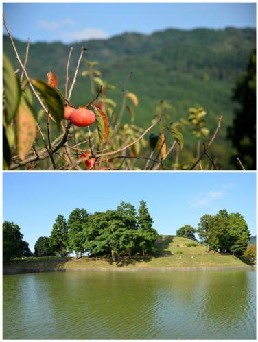 柿と黒塚古墳