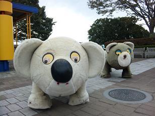 コアラ クマの乗り物