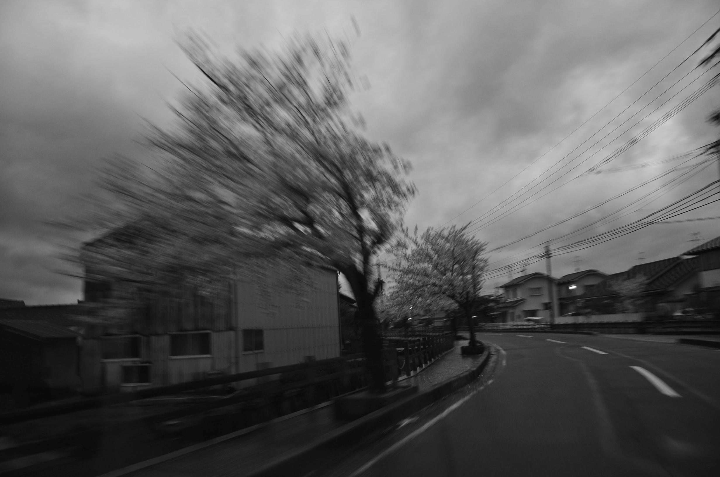 th_DSC_3145.jpg