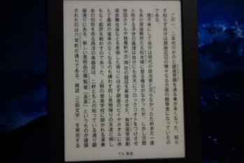 DSC00256R.jpg