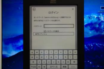 DSC00263R.jpg