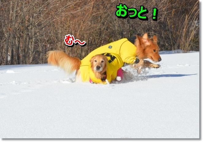 DSC_8806.jpg