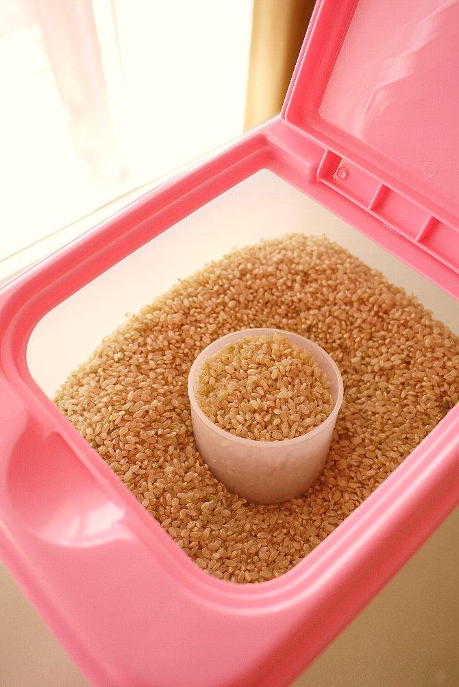 玄米を移し替え