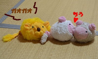 DSC_0591a.jpg