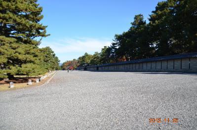 20121124_御所-4