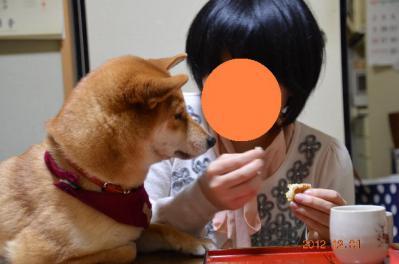 20121201_自宅-1