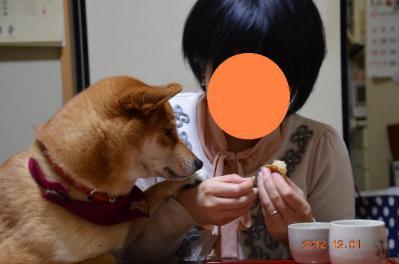 20121201_自宅-2