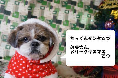 convert_20121223194438.jpg