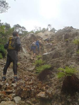シビレ山126