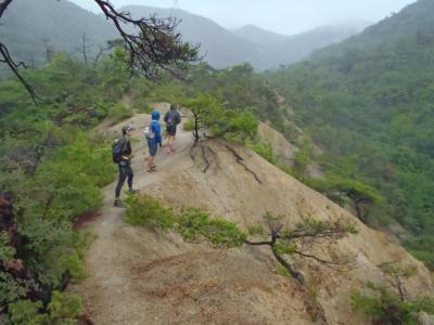 シビレ山122