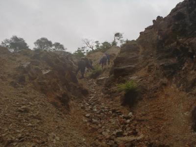 シビレ山1210