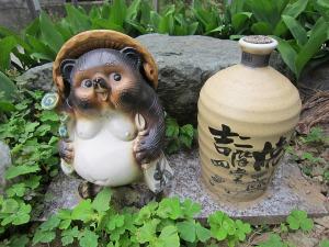 kijisou (1)