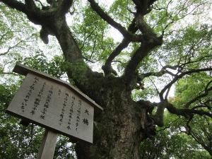 熱田神宮15