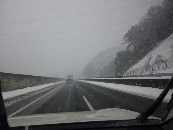 2012/12/10の雪