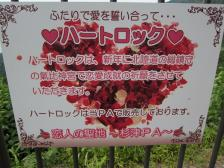 suizu7.jpg