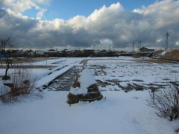2012/12/19yuki
