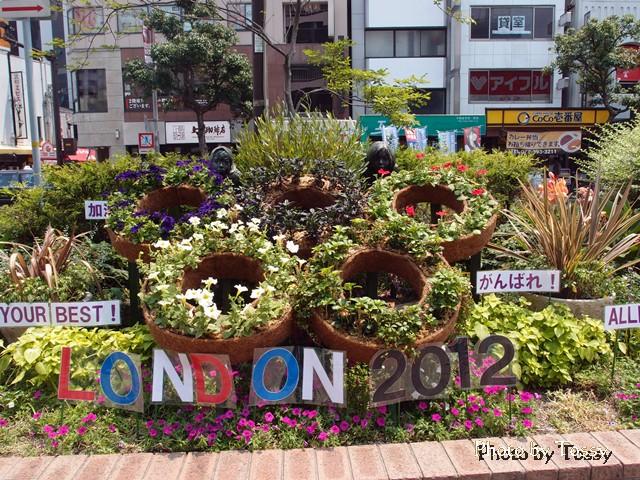 五輪の花壇